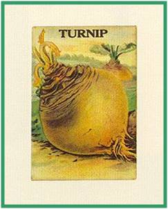 http://enghelp.ru/uploads/posts/2008-12/The_turnip10.jpg